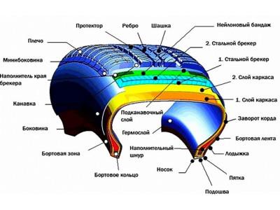 Особенности строения радиальной и диагональной шины
